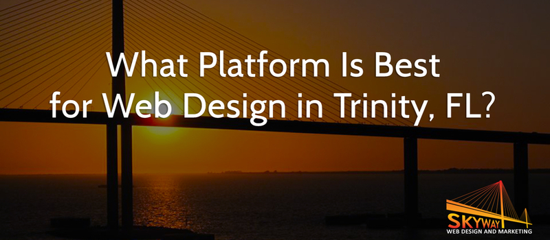 What Platform Is Best for Web Design in Trinity, FL?
