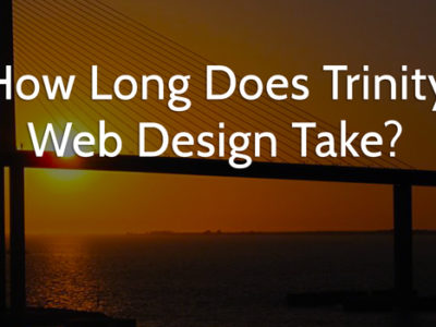 web design in Trinity, FL