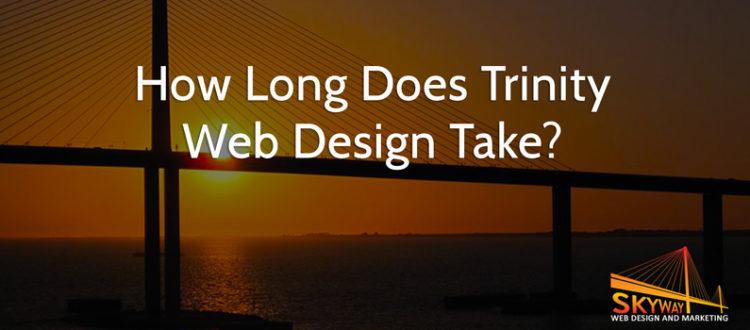 web design in Trinity, FL