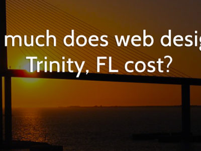 web design in Trinity