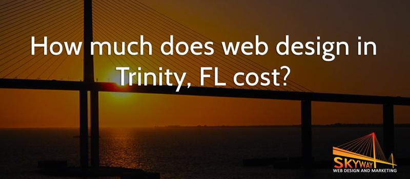 web design in Trinity