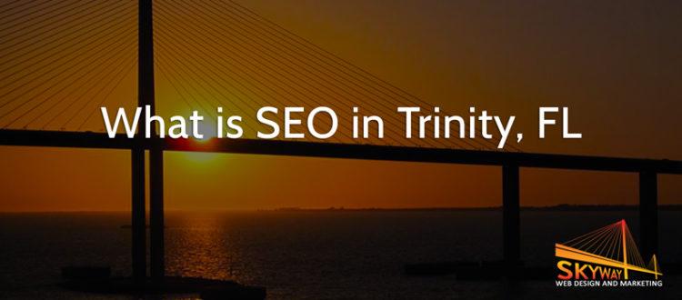 Trinity SEO