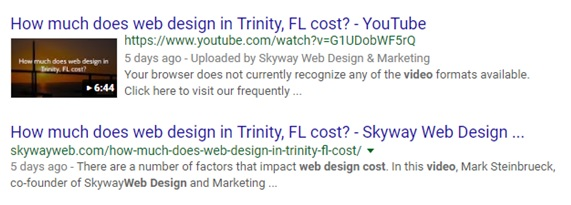 SEO Trinity FL - 2 listings in Google search results